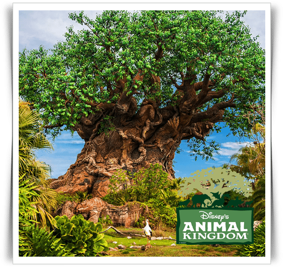animal-kingdom-vip-tour
