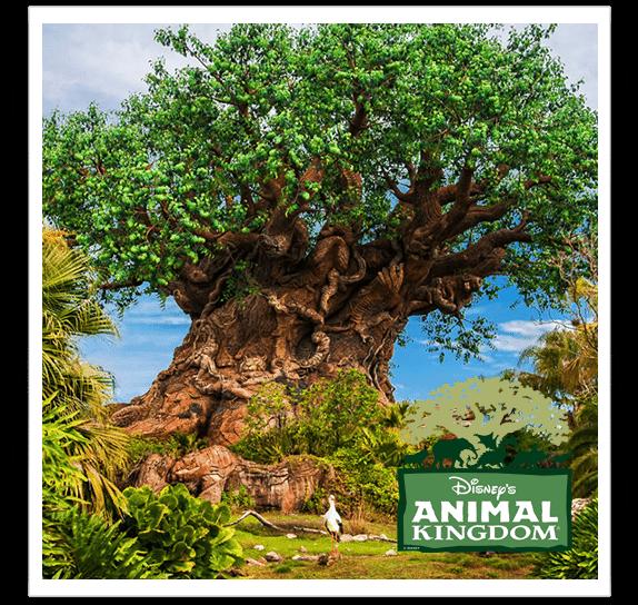 animal-kingdom-vip-tour