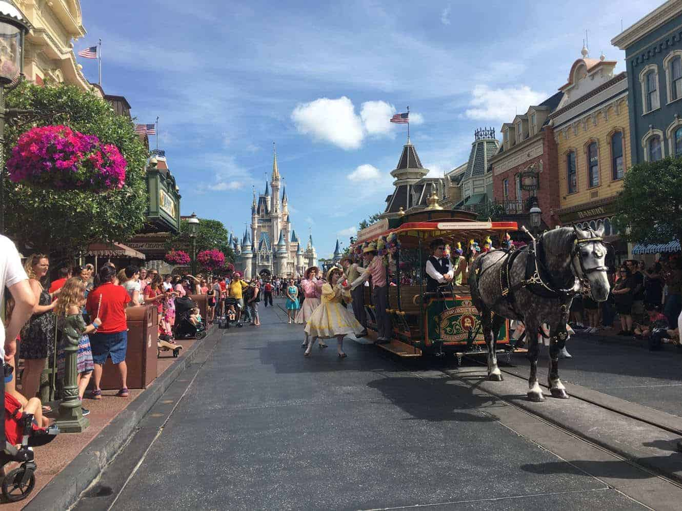 Disney world VIP tours