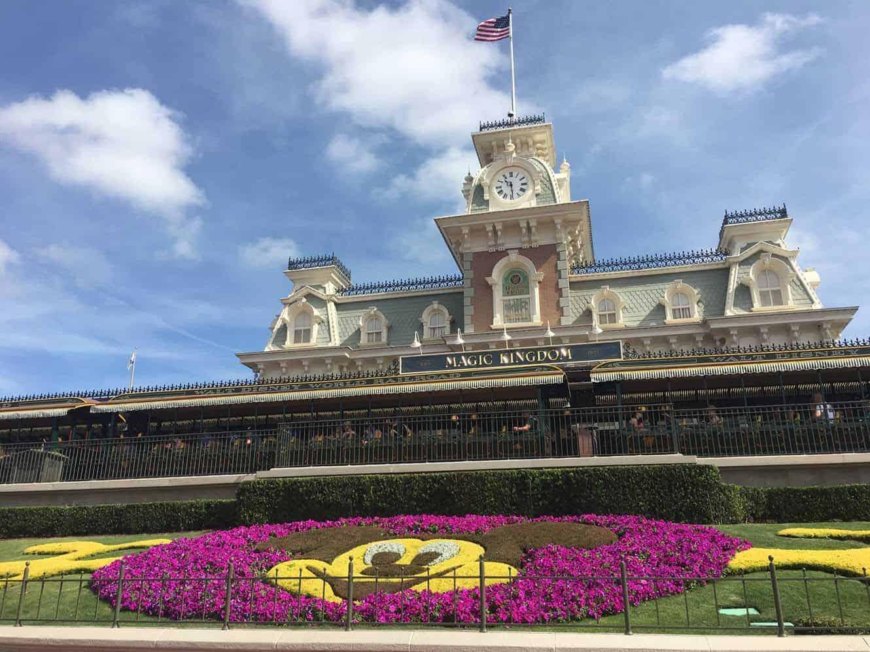 VIP Disney tours